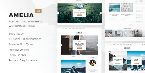 Download Amelia - Clean Blog & Magazine WordPress Theme + Woocommerce.png