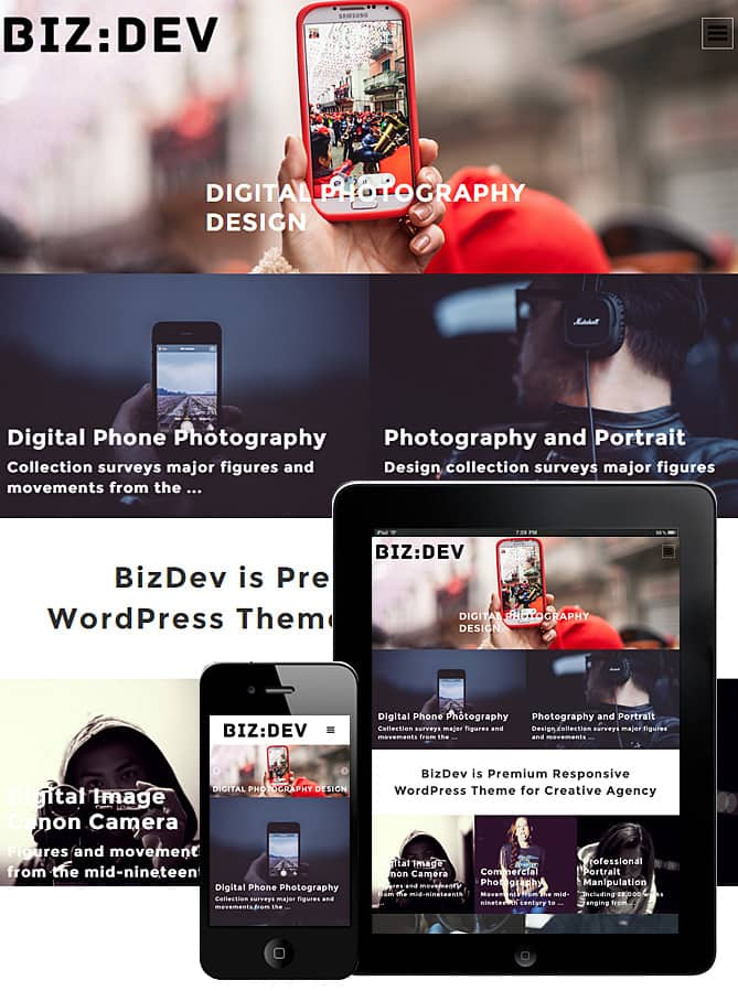 download-biz-dev-theme-responsive.jpg