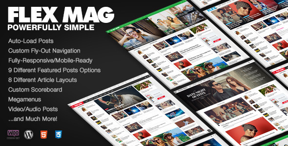 Download Flex Mag - Responsive WordPress News Theme.jpg