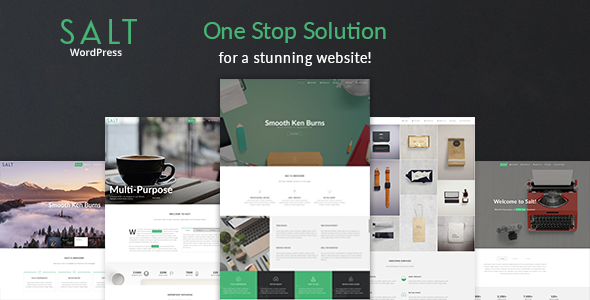 Download Salt Responsive Multi-Purpose WordPress Theme.png