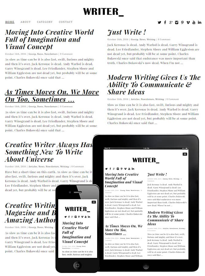 downloadn-writer-wordpress-theme-jpg.261