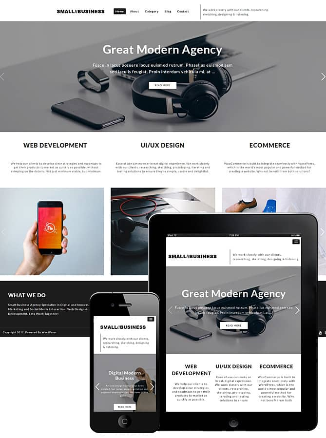 small-business-wordpress-theme.jpg