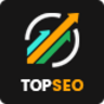 TopSEO - SEO, Digital Marketing WordPress Theme